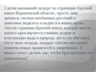 Сделав маленький экскурс по страницам Красной книги Воронежской области , про