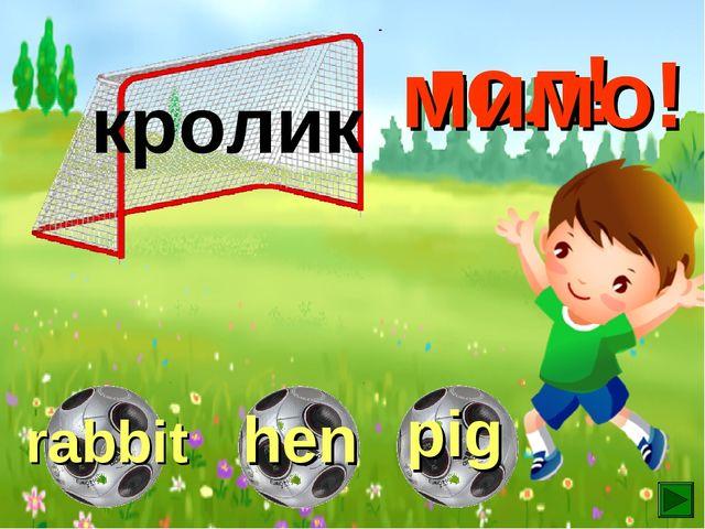 кролик гол! мимо! мимо!