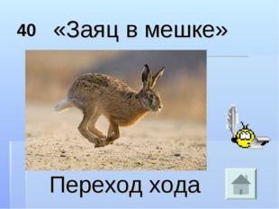 40 «Заяц в мешке» Переход хода