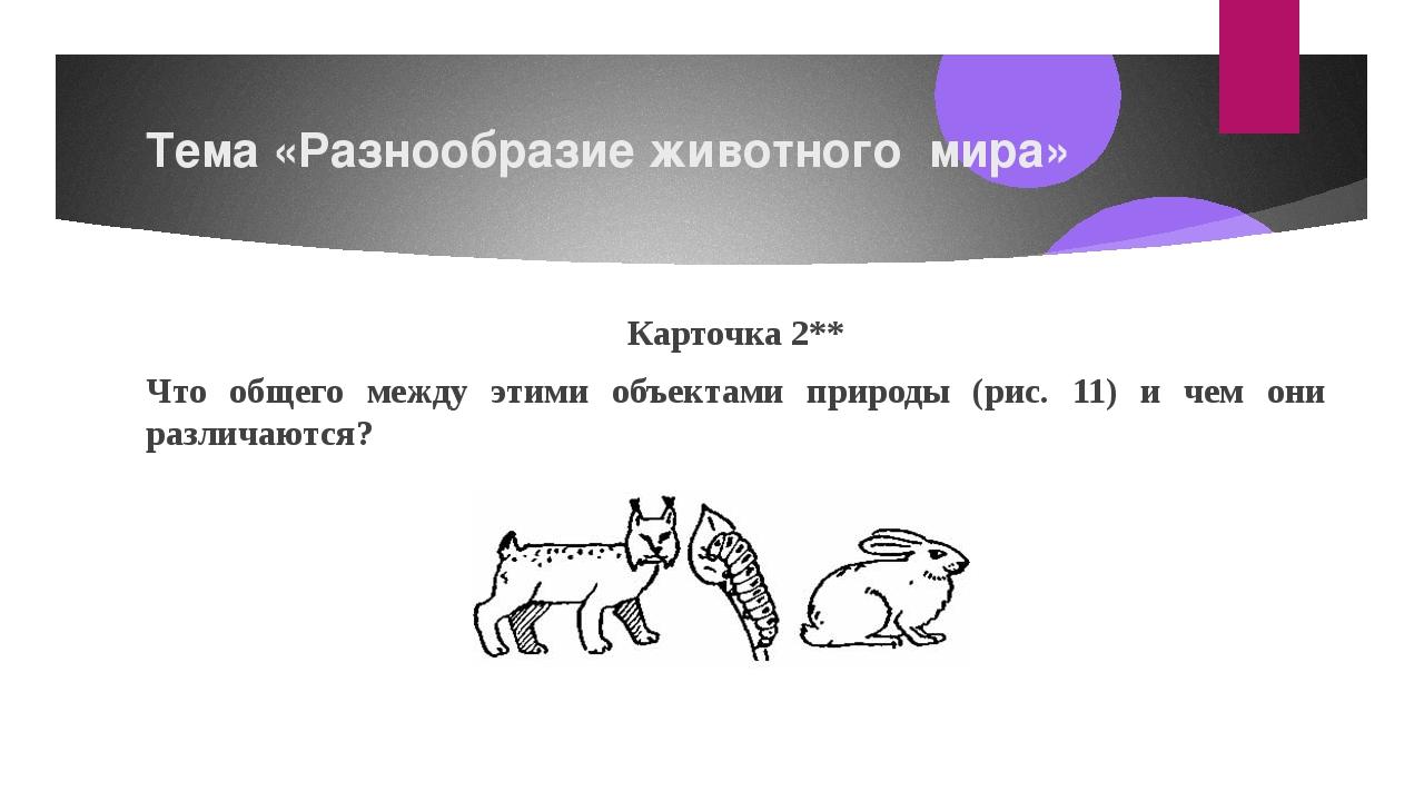 Тема «Разнообразие животного мира» Карточка2** Что общего между этими объект...