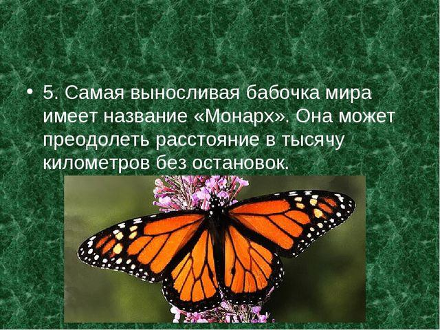 5. Самая выносливая бабочка мира имеет название «Монарх». Она может преодолет...