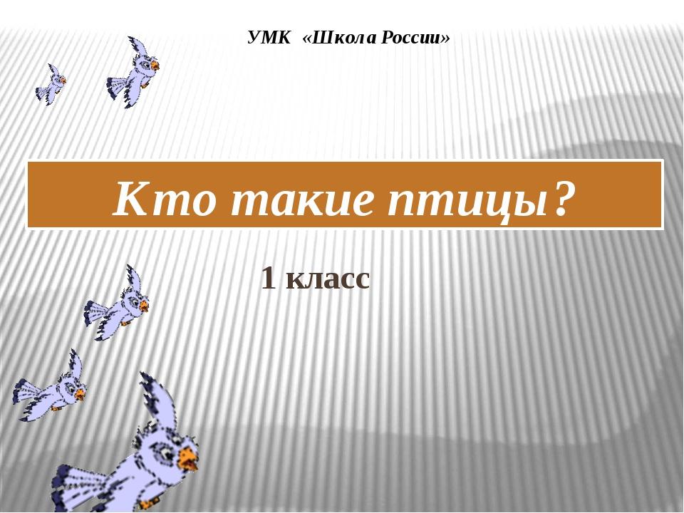 УМК «Школа России» 1 класс Кто такие птицы?
