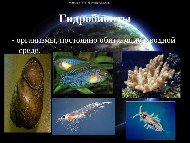 - организмы, постоянно обитающие в водной среде. - организмы, постоянно обит...
