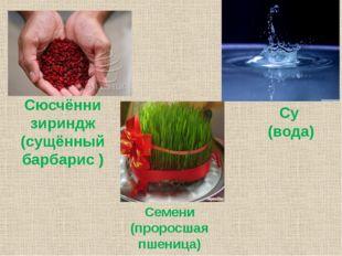 Семени (проросшая пшеница) Су (вода) Сюсчённи зириндж (сущённый барбарис )