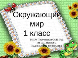 Окружающий мир 1 класс МБОУ Трубчевская СОШ №2 им. А.С.Пушкина Падина Лидия Г
