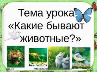Тема урока «Какие бывают животные?» http://aida.ucoz.ru
