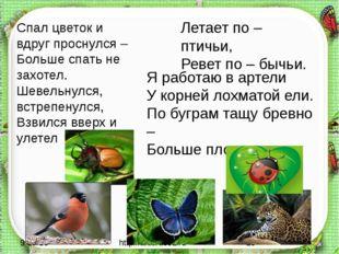 http://aida.ucoz.ru Спал цветок и вдруг проснулся – Больше спать не захотел.