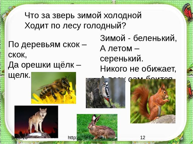 http://aida.ucoz.ru По деревьям скок – скок, Да орешки щёлк – щелк. Зимой -...