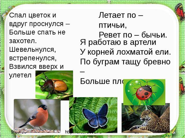 http://aida.ucoz.ru Спал цветок и вдруг проснулся – Больше спать не захотел....