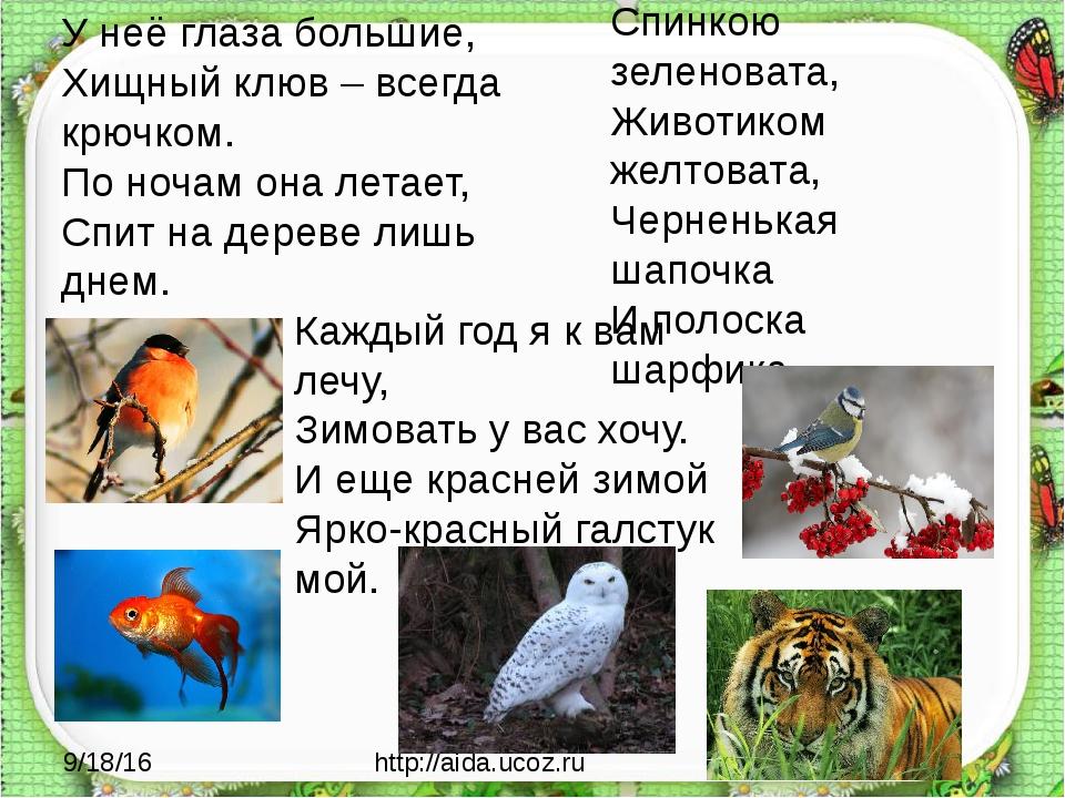 http://aida.ucoz.ru Спинкою зеленовата, Животиком желтовата, Черненькая шапо...