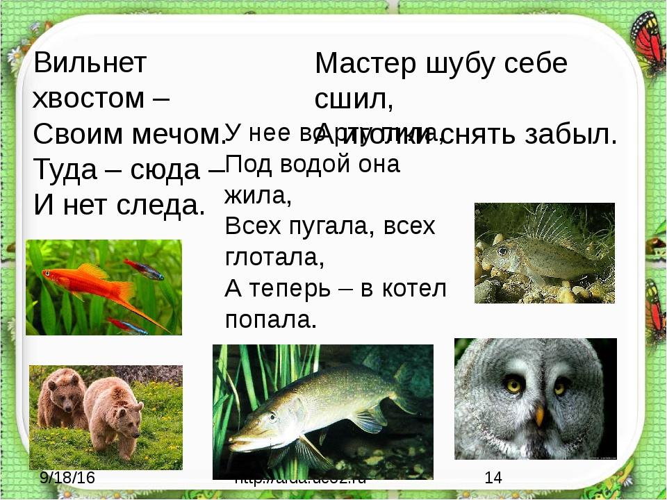 http://aida.ucoz.ru Вильнет хвостом – Своим мечом. Туда – сюда – И нет следа...