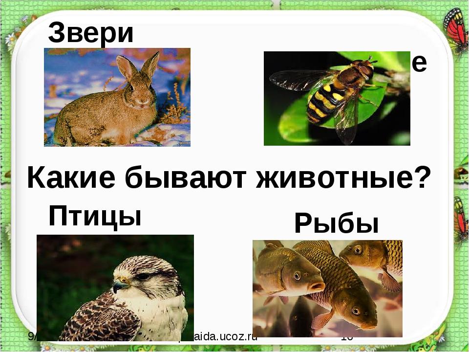 Насекомые http://aida.ucoz.ru Какие бывают животные? Звери Птицы Рыбы