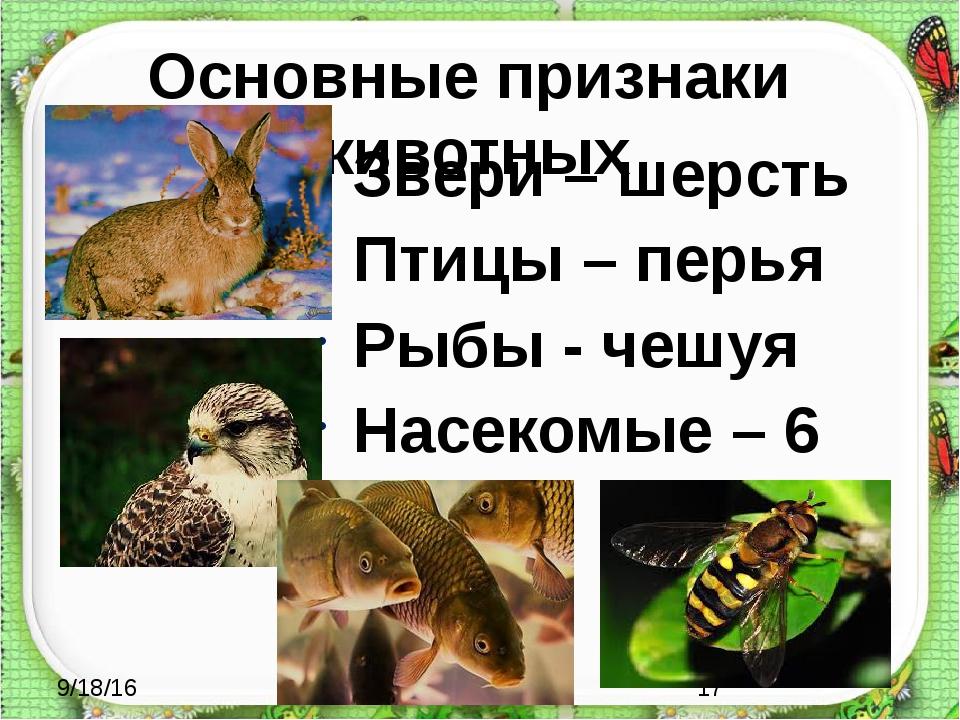 Основные признаки животных Звери – шерсть Птицы – перья Рыбы - чешуя Насекомы...