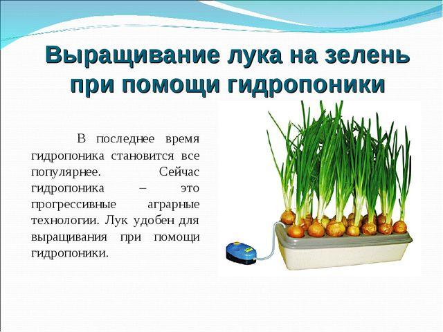 Выращивание лука на зелень при помощи гидропоники В последнее время гидропони...