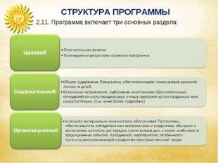 СТРУКТУРА ПРОГРАММЫ Аспекты образовательной среды 2.11. Программа включает тр