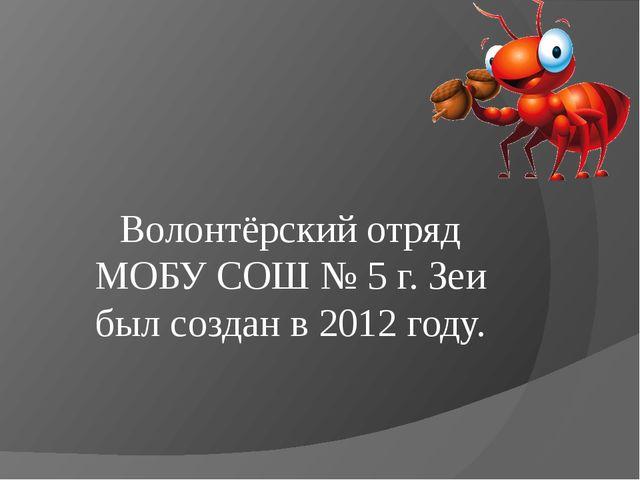 Волонтёрский отряд МОБУ СОШ № 5 г. Зеи был создан в 2012 году.