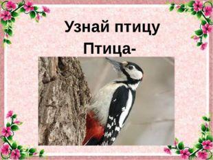 Узнай птицу Птица-плотник