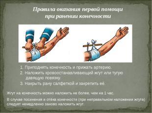 Правила оказания первой помощи при ранении конечности 1. Приподнять конечност