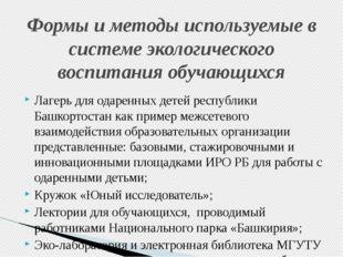 Лагерь для одаренных детей республики Башкортостан как пример межсетевого вз