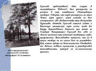 """Гумилев, предсказавший свою смерть в стихотворении """"Рабочий"""", был расстрелян"""