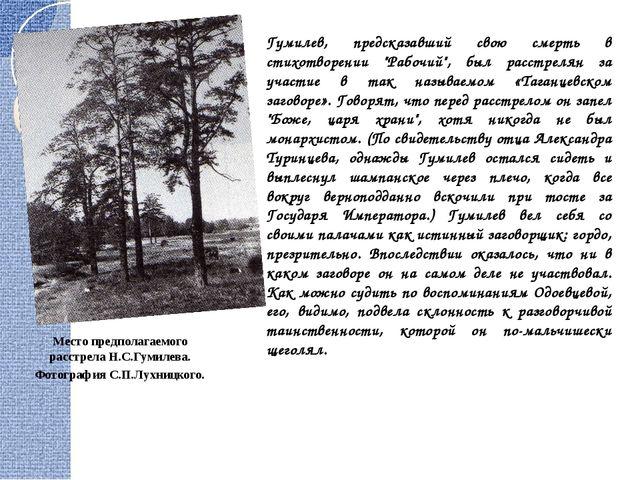 """Гумилев, предсказавший свою смерть в стихотворении """"Рабочий"""", был расстрелян..."""