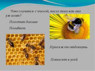 Что случится с пчелой, после того как она ужалит? Полетит дальше Погибнет Пр