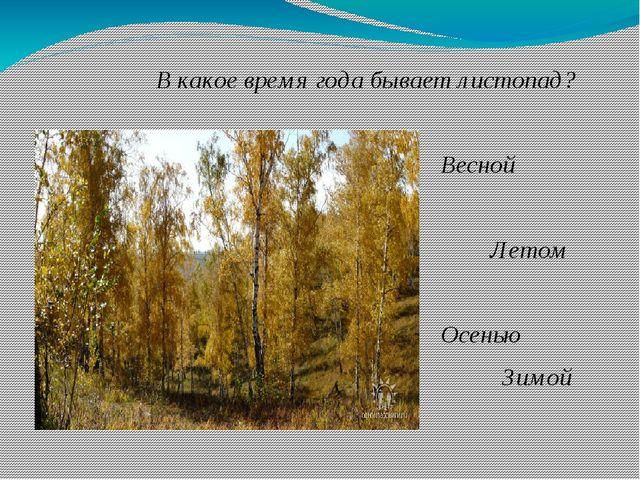 В какое время года бывает листопад? Весной Летом Осенью Зимой