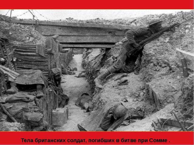 Тела британских солдат, погибших в битве при Сомме . Лето 1916 года.