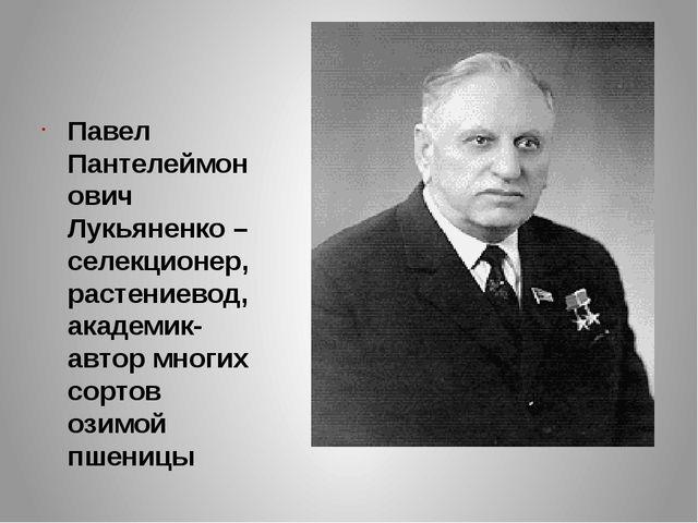 Павел Пантелеймонович Лукьяненко – селекционер, растениевод, академик- автор...