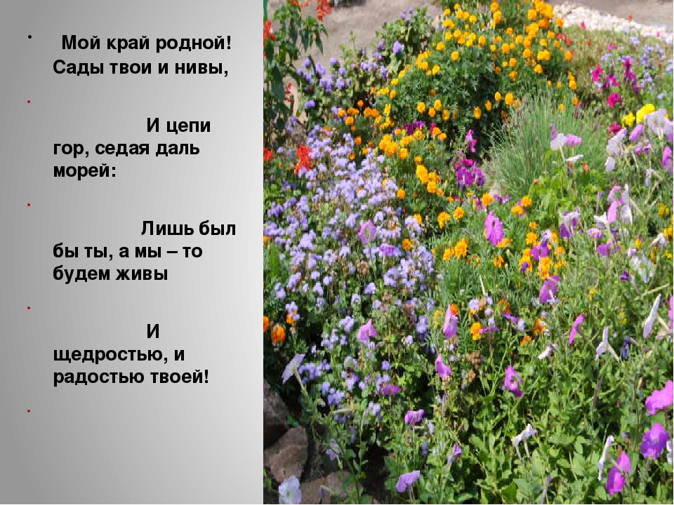 Мой край родной! Сады твои и нивы, И цепи гор, седая даль морей: Лишь был бы...