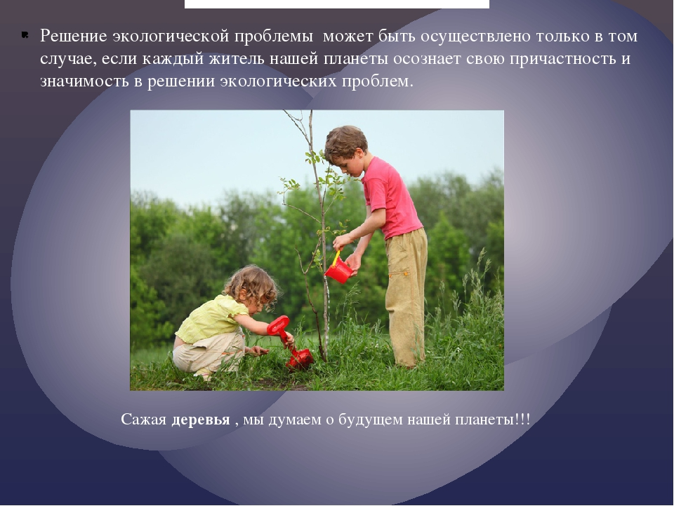 Решение экологической проблемы может быть осуществлено только в том случае, е...