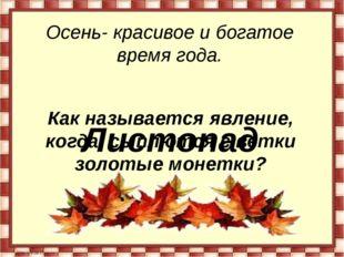 Осень- красивое и богатое время года. Как называется явление, когда сыплются