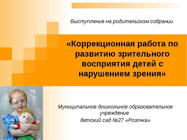 «Коррекционная работа по развитию зрительного восприятия детей с нарушением з...