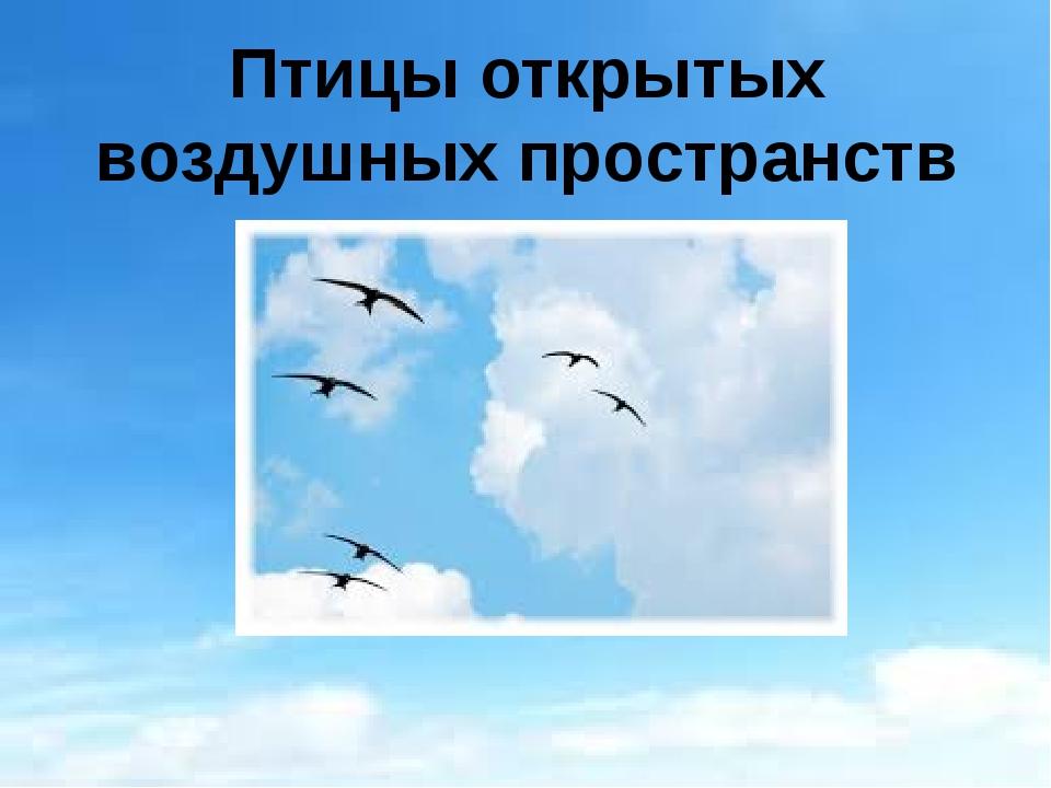 Птицы открытых воздушных пространств