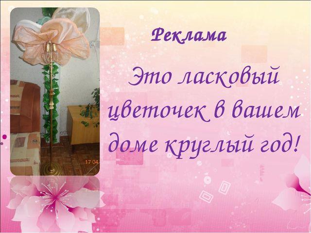 Реклама Это ласковый цветочек в вашем доме круглый год!