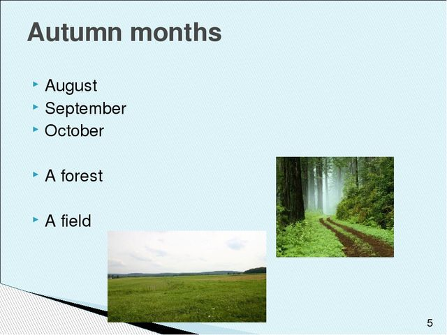 August September October A forest A field Autumn months