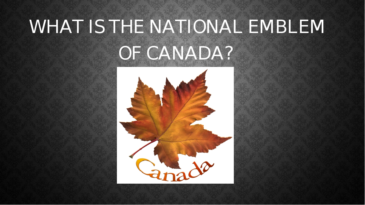 WHAT IS CANADIAN ANIMAL SYMBOL?