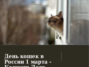 День кошек в России 1 марта - Кошкин День