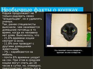 """Необычные факты о кошках Кошки продолжают не только радовать своих """"владельце"""