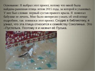 Основание: Я выбрал этот проект, потому что мной была найдена раненная птица