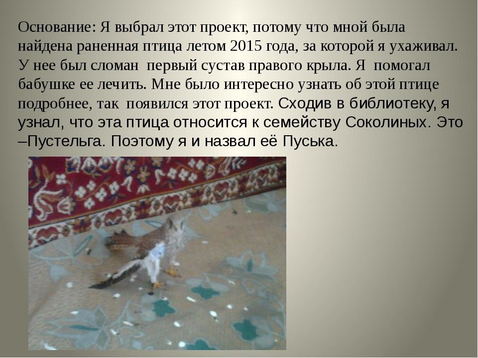 Основание: Я выбрал этот проект, потому что мной была найдена раненная птица...