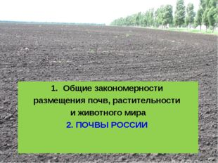 Общие закономерности размещения почв, растительности и животного мира 2. ПОЧВ
