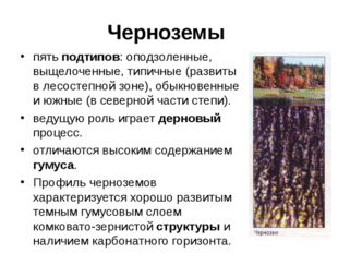 Черноземы пять подтипов: оподзоленные, выщелоченные, типичные (развиты в лесо