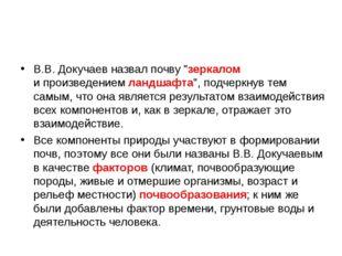"""В.В. Докучаев назвал почву """"зеркалом ипроизведением ландшафта"""", подчеркнув т"""