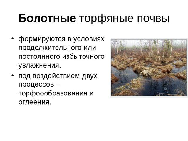 Болотные торфяные почвы формируются в условиях продолжительного или постоянно...