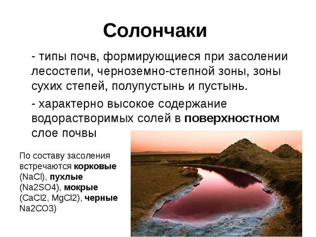 Солончаки - типы почв, формирующиеся при засолении лесостепи, черноземно-ст...
