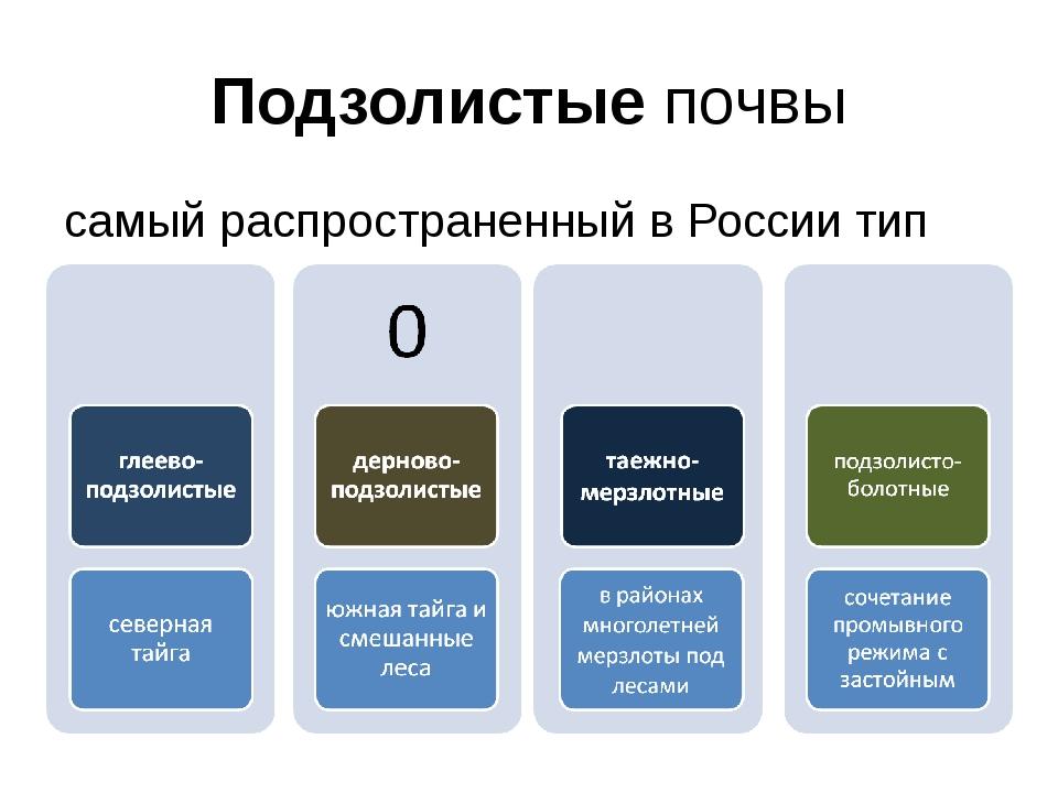 Подзолистые почвы самый распространенный в России тип почв