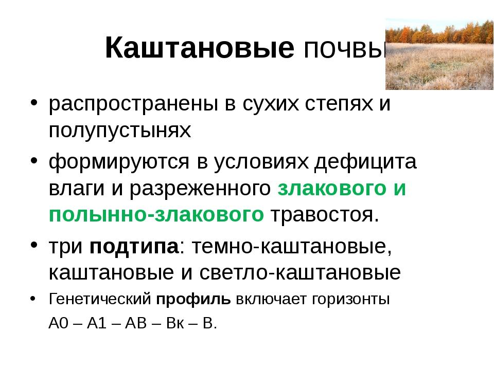 Каштановые почвы распространены в сухих степях и полупустынях формируются в у...