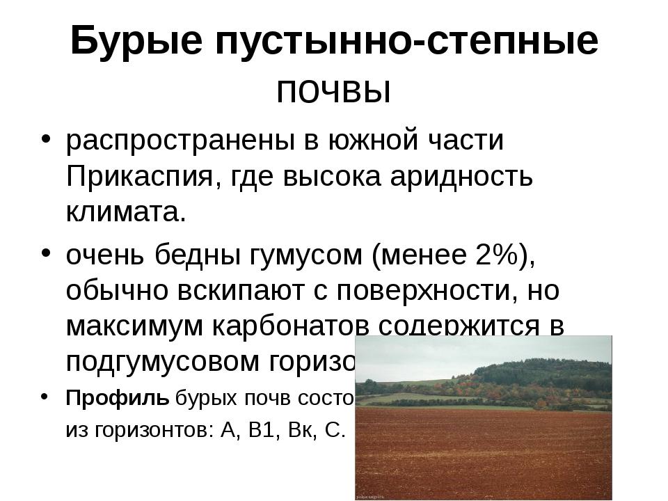 Бурые пустынно-степные почвы распространены в южной части Прикаспия, где высо...