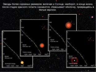 Звезды более скромных размеров, включая и Солнце, наоборот, в конце жизни, по